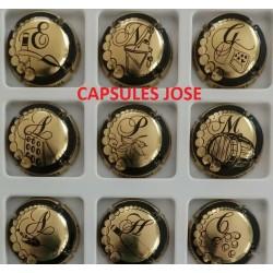 Série de 9 capsules de champagne - GENERIQUE (Puzzle Champagne)